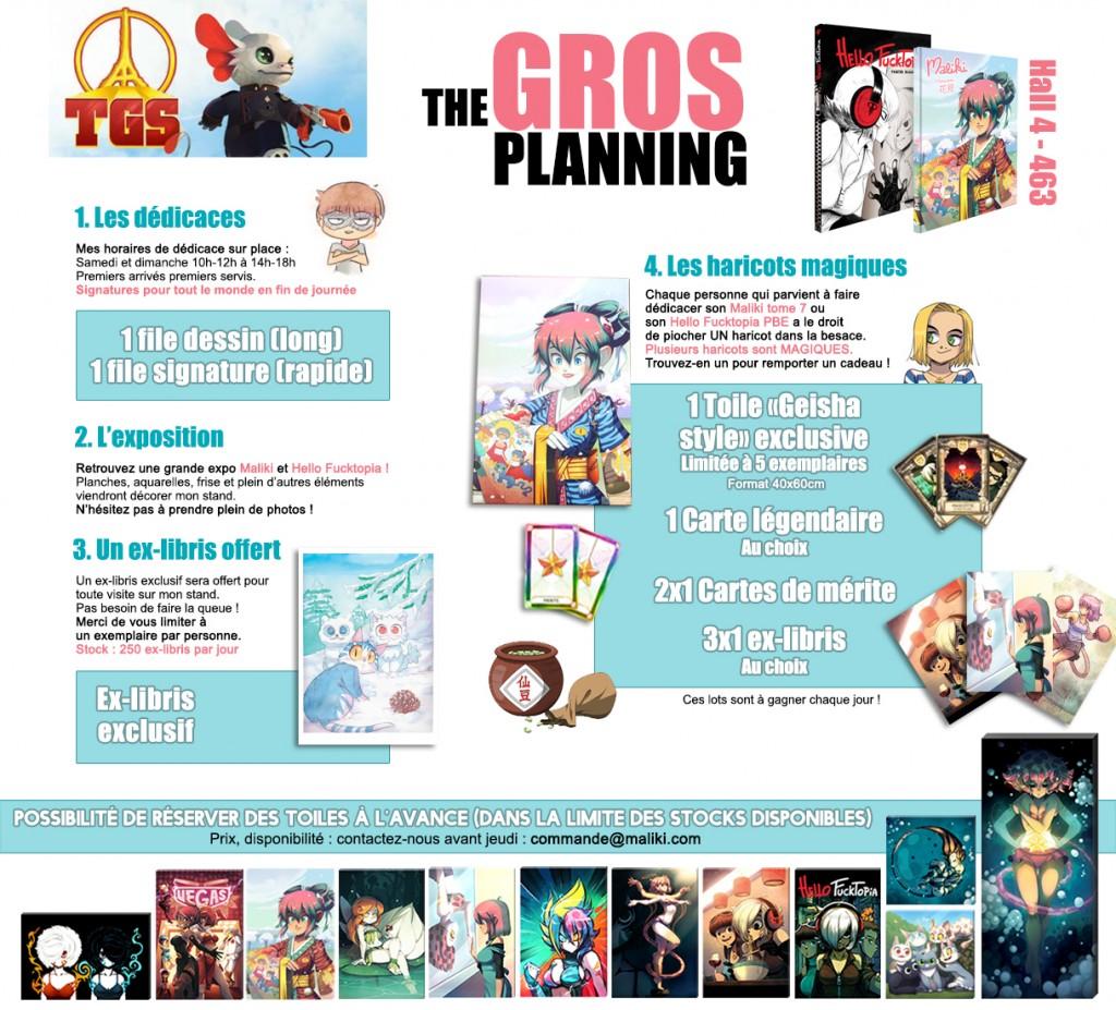 TGS-2015-Planning